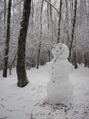 зима в нашем дворе