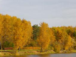 календарь природы октябрь