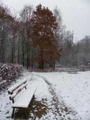 скамейка в снегу