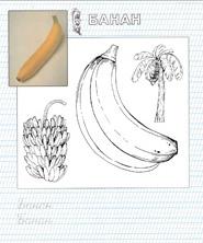 раскраска банан
