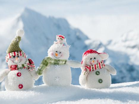 Три веселых друга снежок пушок и