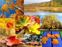 картинки на рабочий стол осень