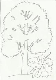 Раскраски для детей на тему Осень. Обсуждение на ...