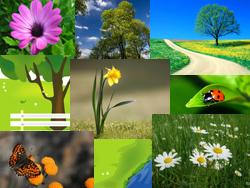 картинки на рабочий стол весна