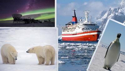полярные полюса