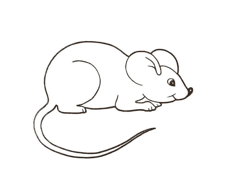 картинка раскраска для детей мышка