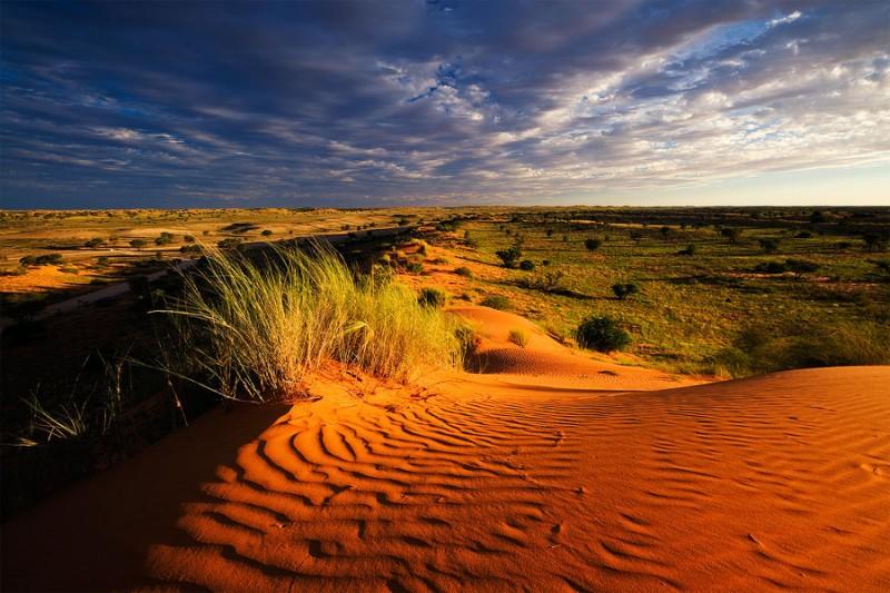 фото природа африки