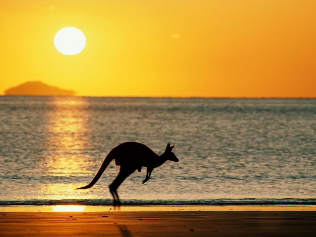 Картинки по запросу австралия природа