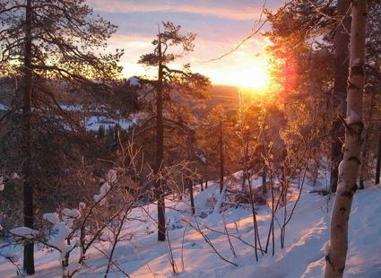 пушкин о зиме сочинение