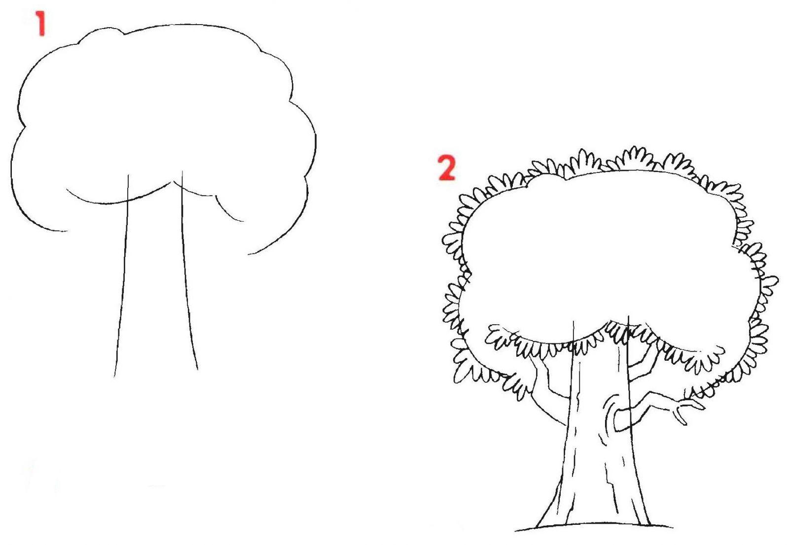 Как нарисовать древо карандашом поэтапно