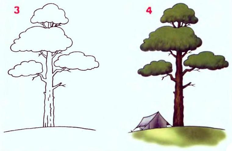 разрисуйте кору дерева