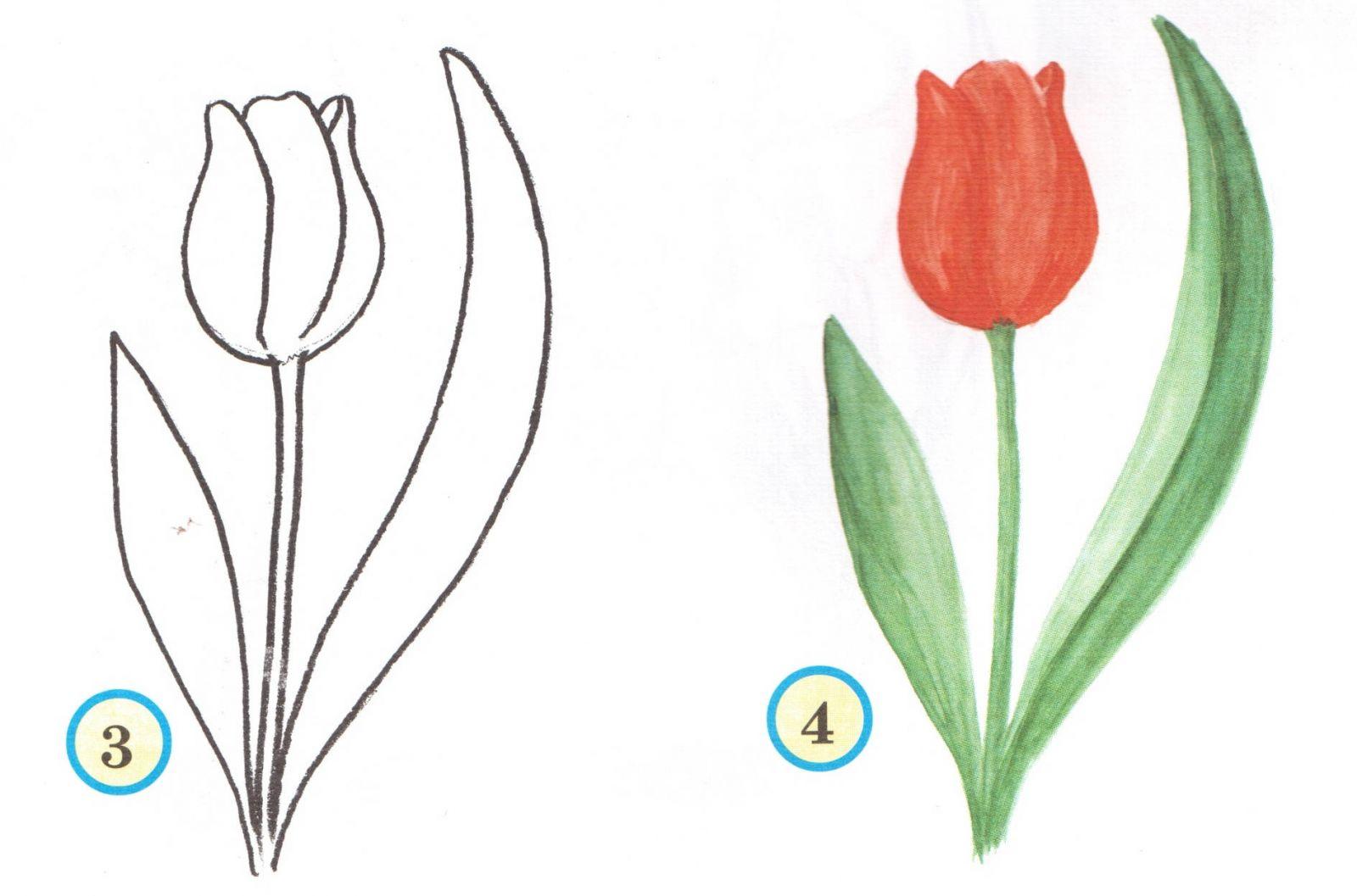 Весна пришла рисунки карандашом для