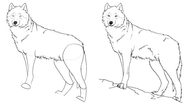 5. Пририсуйте лапы, хвост и