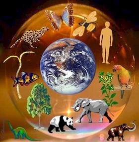 сочинение на тему природа и люди