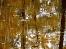 сочинения на тему дождь идёт
