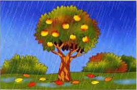 раскраски на тему осень