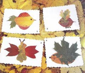 гербарий из осенних листьев