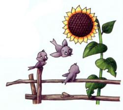 рисуем растения