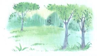 стихи золотой дождь