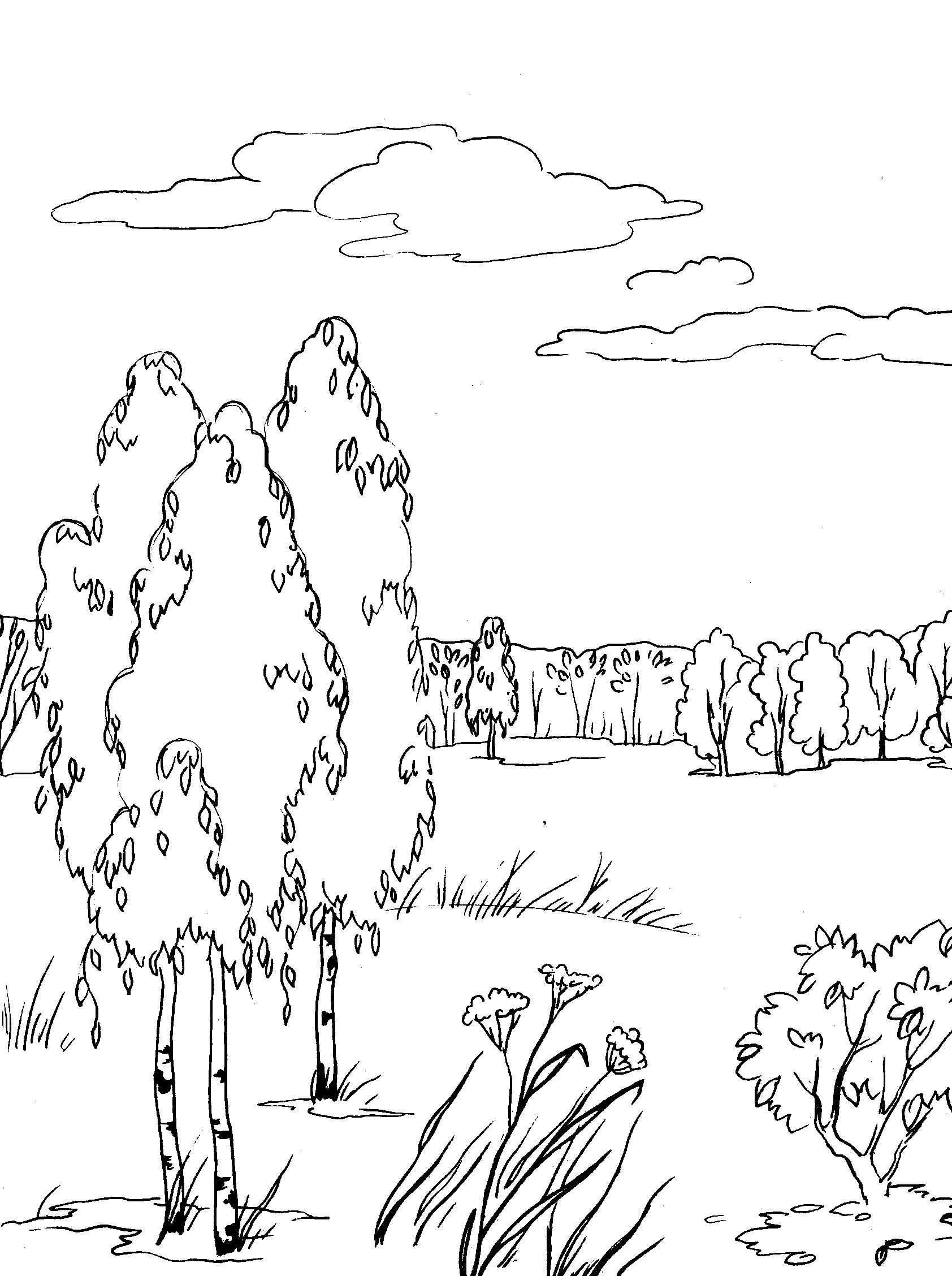 Раскраска осень - 8cf
