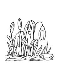 загадка про весну