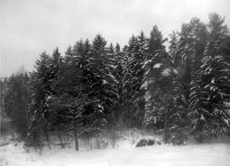 народный календарь зима
