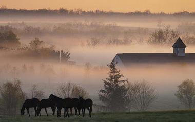 Почему над рекой образуется туман