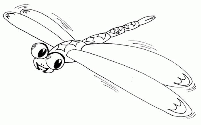насекомые картинки раскраски для детей
