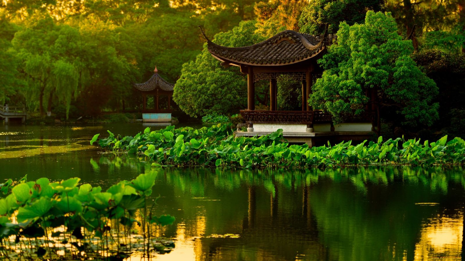 фото в китайском стиле природа что сладкая