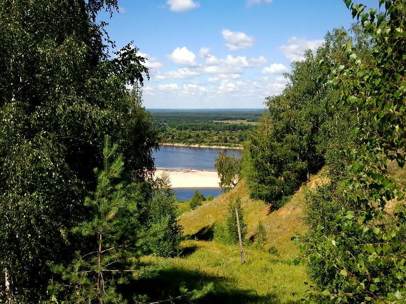 позднее советское растительность нижегородской области фото дикие