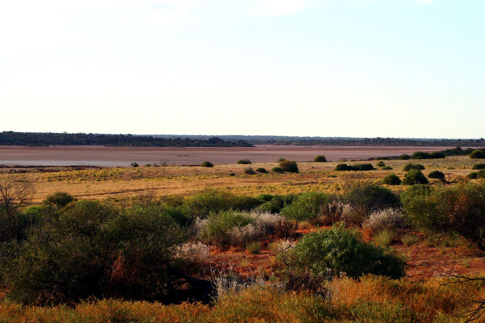 Самую большую площадь в Австралии занимают: а) пустыни.