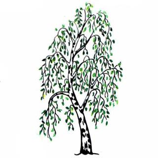 Свойства древесины  Из дерева своими руками! Интересные