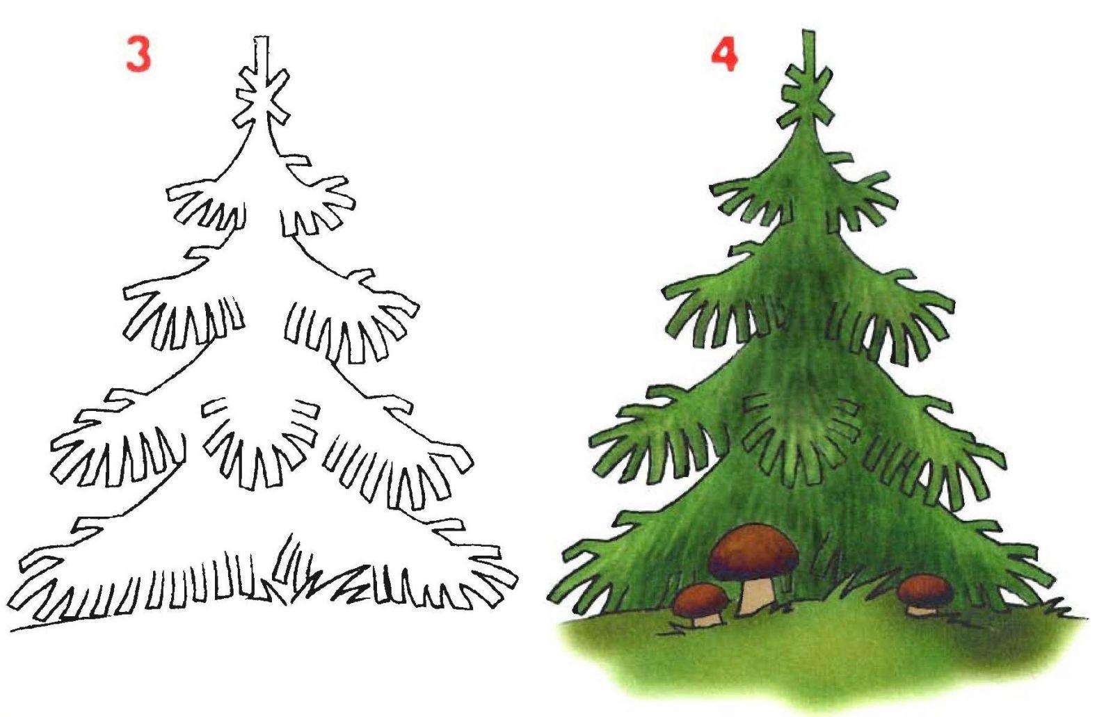 секрет, картинки елка карандашом поэтапно для расставлены лавочки, чтобы