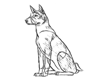 фото рисунки собак карандашом