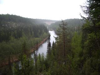 Природа, растения и животные Архангельской области