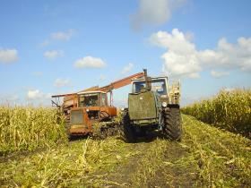 сельское хозяйство Беларуссии
