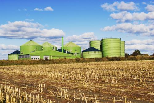 пищевая промышленность и сельское хозяйство